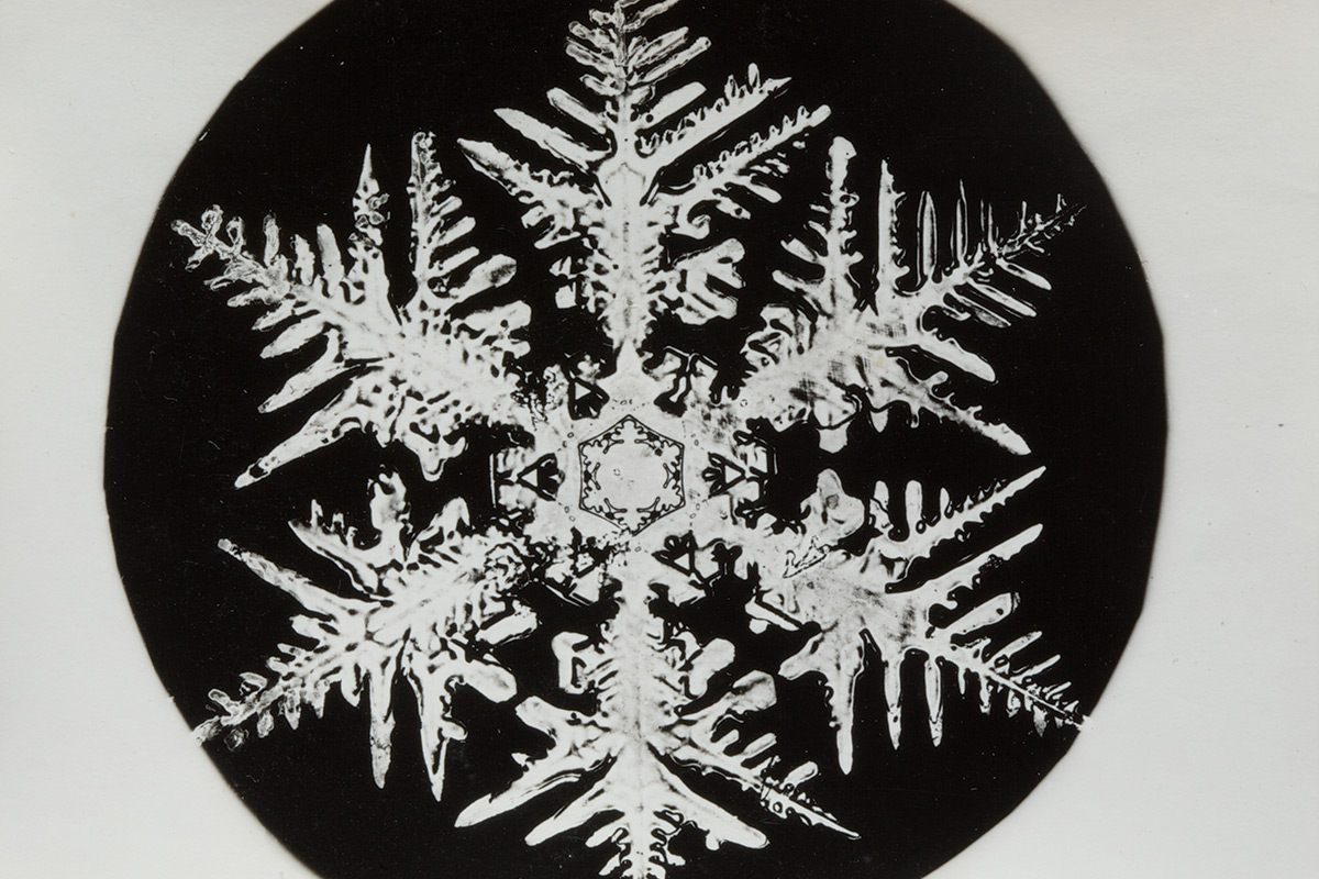 the pioneering snowflake photographs of a young obsessive new