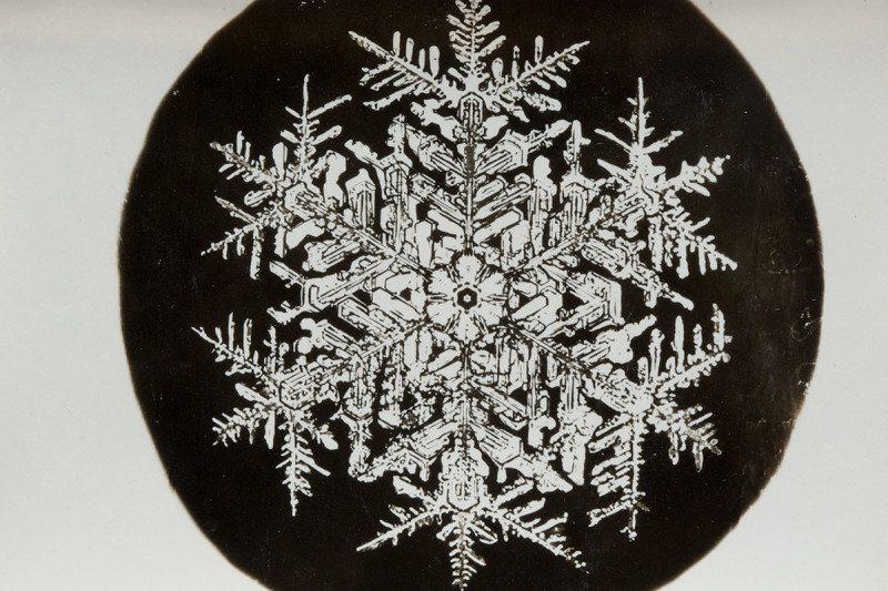 snowflake 4