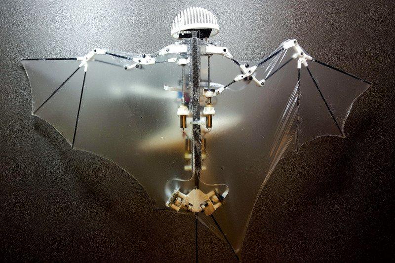bat robot