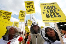 "People wearing beek-keeper outfits carrying protest signs that say things like ""save the bees"""