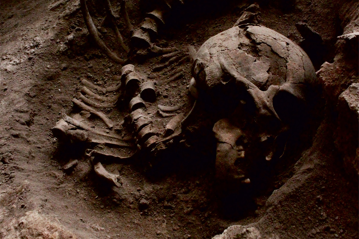 Skull and other remains at Brazilian burial site