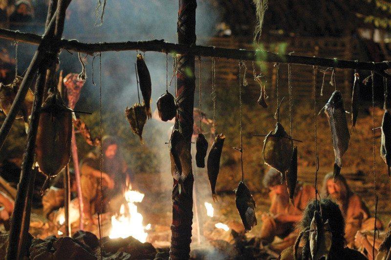 Neanderthal diet