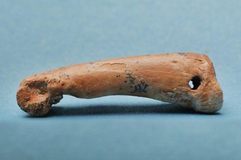 Jewellery made from bear cuscus finger bone