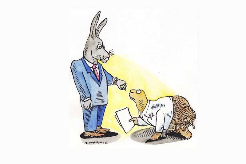 hare and tortoise cartoon