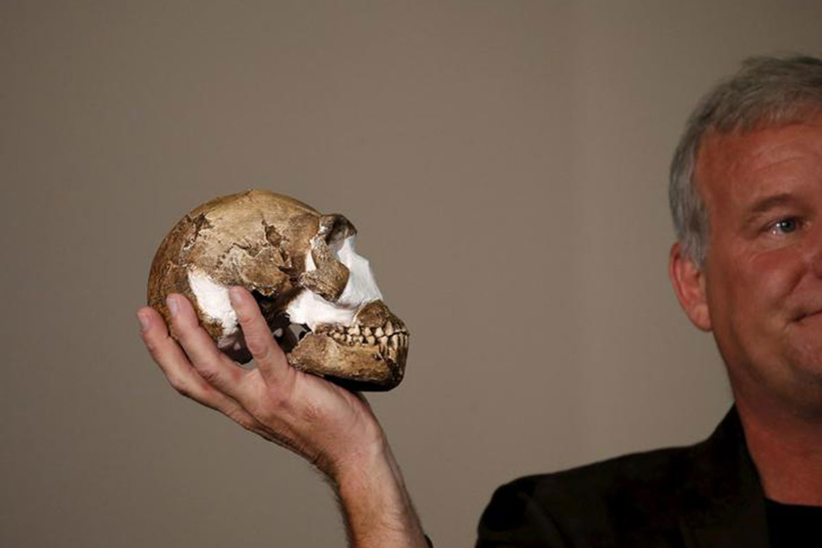 Mystery human species <em>Homo naledi</em> had tiny but advanced brain