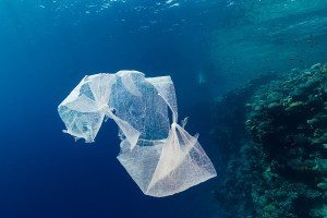 There's less plastic in the oceans than there should be
