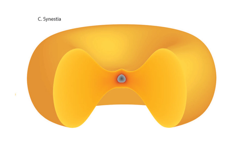 Diagram of the shape of a synestia – like a red blood cell or a doughnut