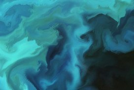 naturally occurring phytoplankton bloom