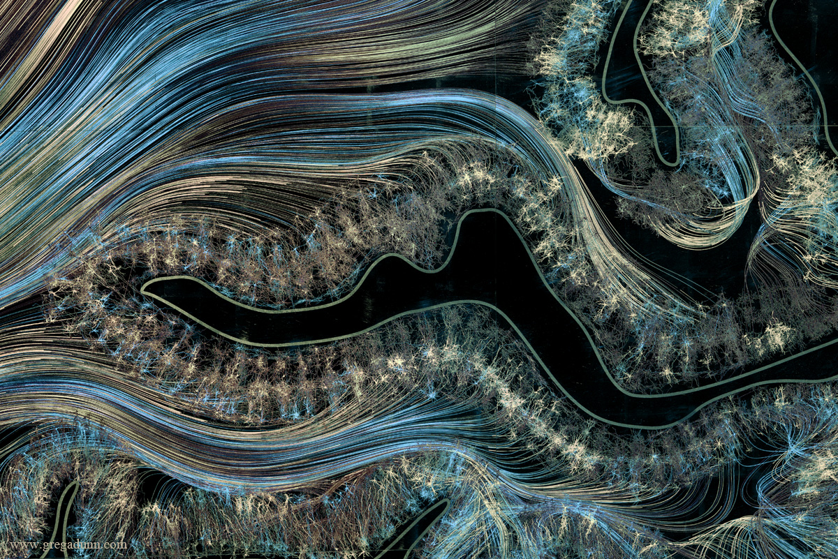Brain images display the beauty and complexity of consciousness