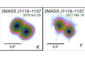 two maps of heat maps of twin plants side by side