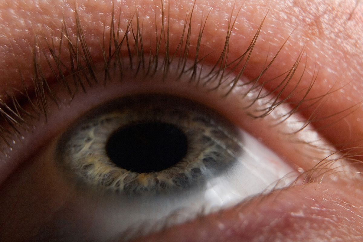 Synthetic iris could let cameras react to light like our eyes do