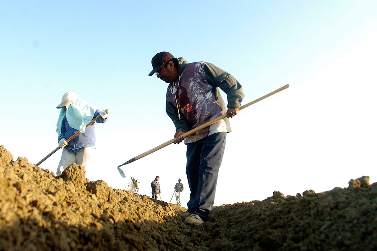 Bringing our soil back to life with the latest in earth for Soil our life