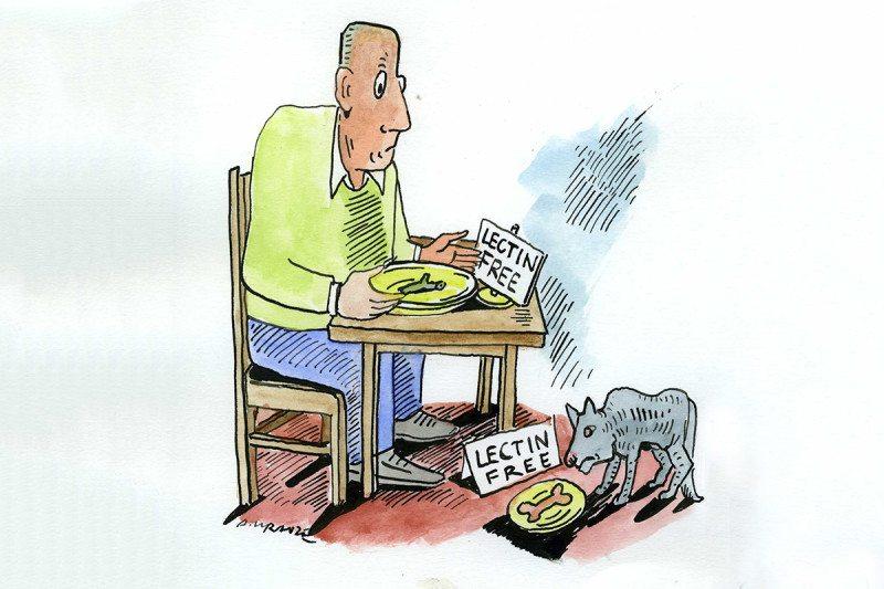 lectin-free food cartoon