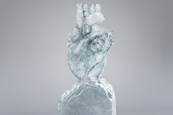 ice artwork