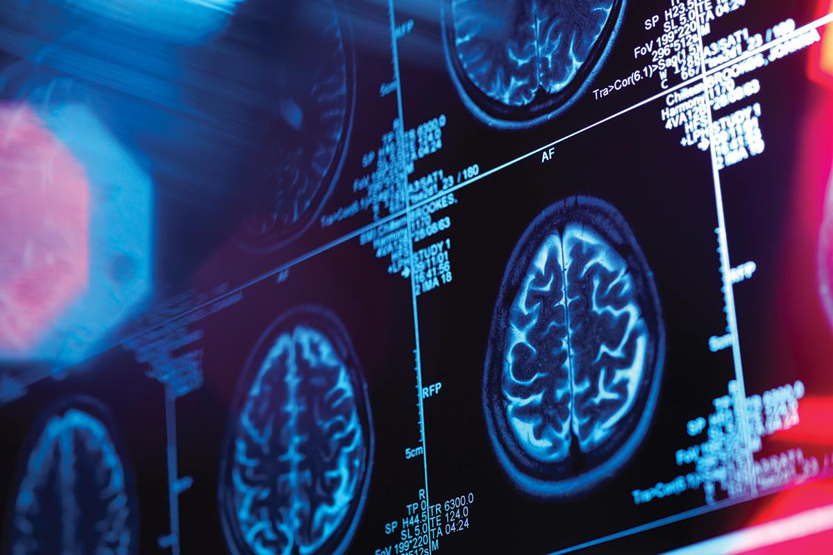 мозг предсказывает будущее