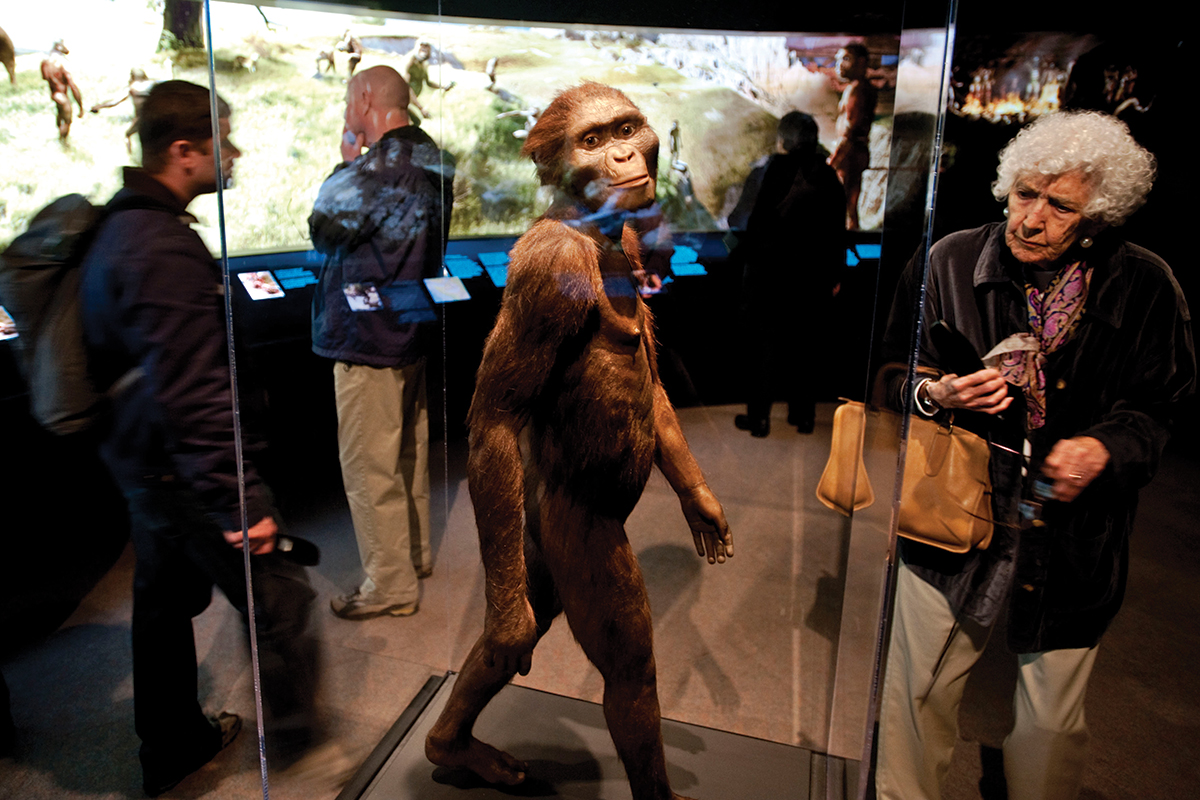 Who are you? How the story of human origins is being rewritten