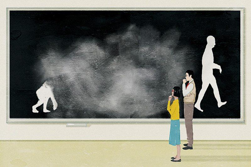illustration ape to man