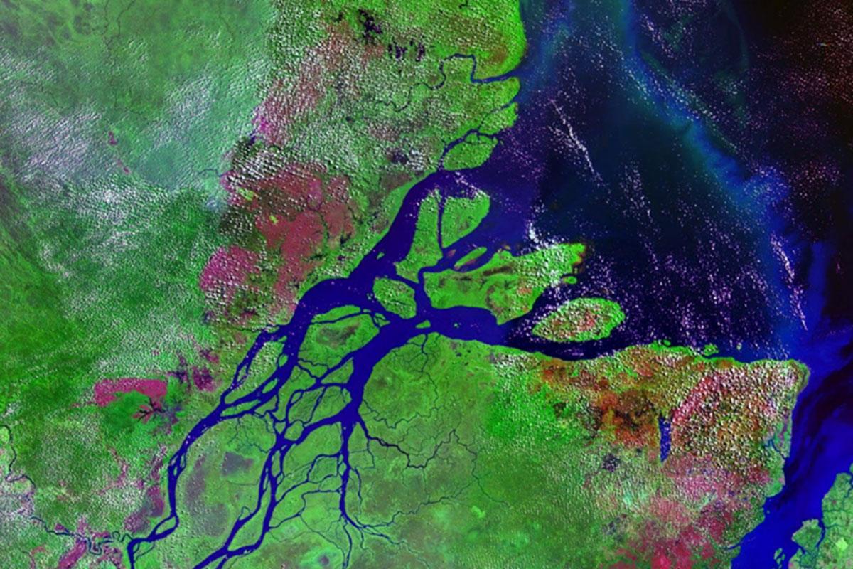 satellite image of the Amazon