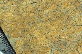Fossilised worm holes