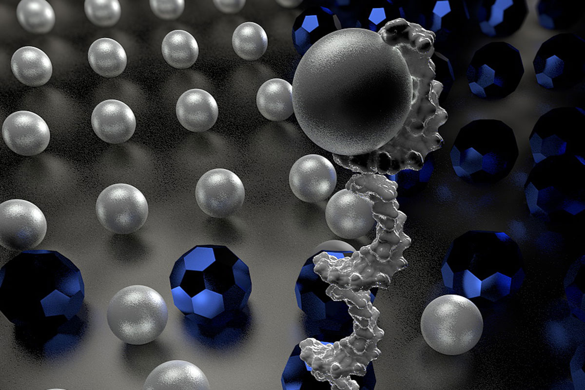 DNA robot sorts molecules without external input