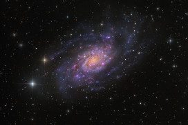 The spiral galaxy NGC 2403, containing the star known as 1954J