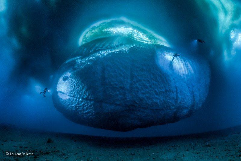 """The ice monster"": Winner, Earth's Environments"