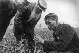 Trofim Lysenko measures wheat growth