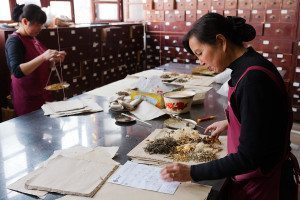 Preparing traditional herbal medicines