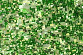 Variegated green crop circles covering what was once shortgrass prairie in southwestern Kansas