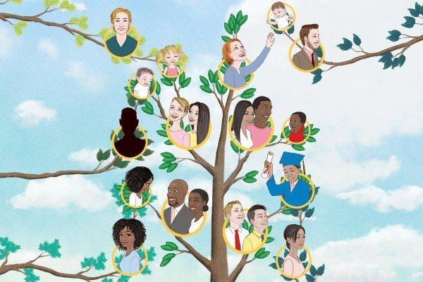 family tree artwork