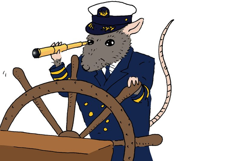 rat cartoon