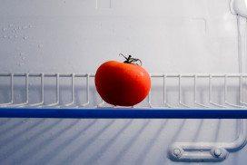 Solitary tomato in fridge
