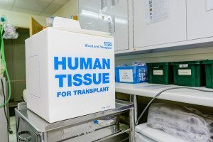 A box for transporting human tissue