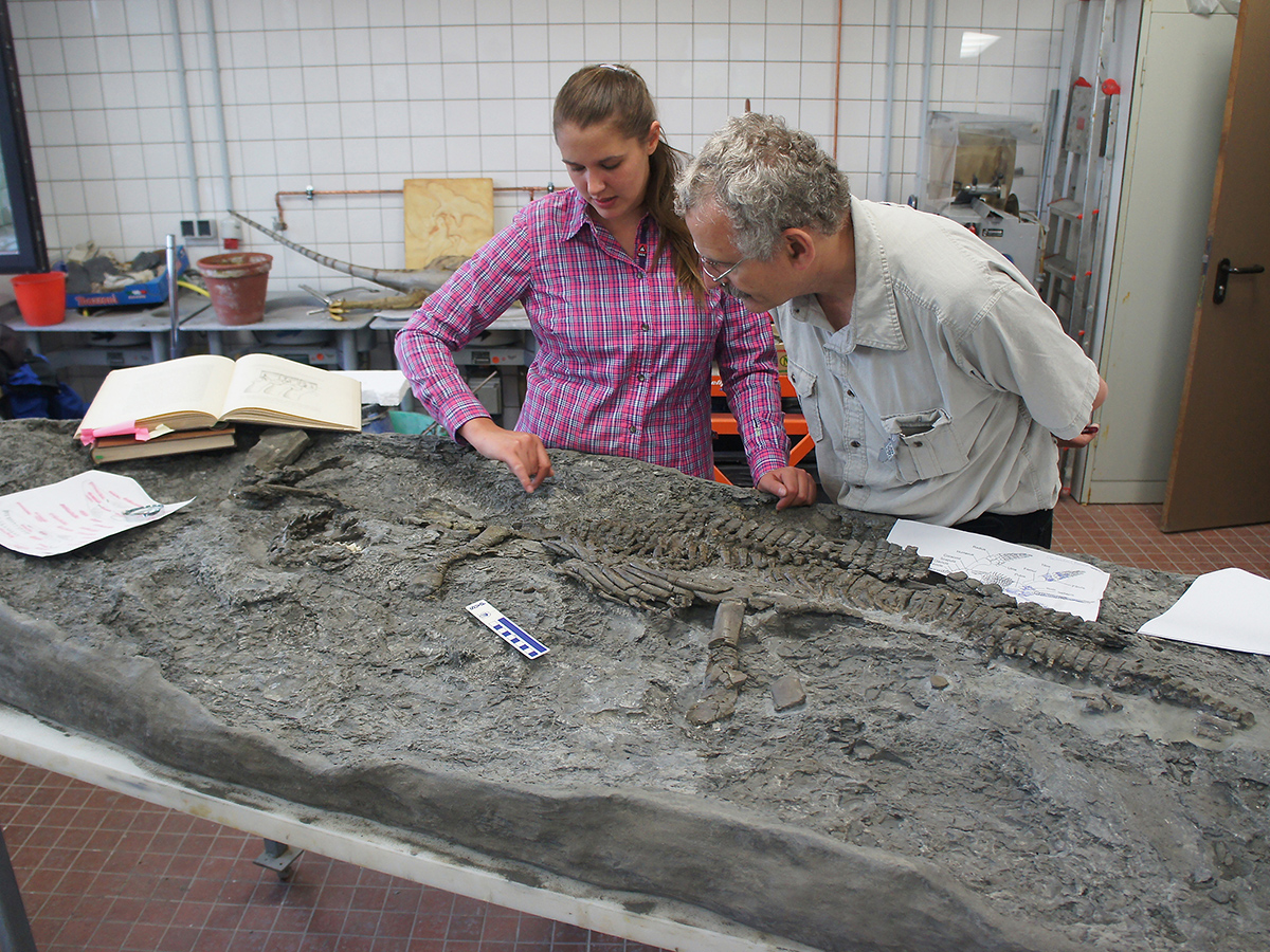 Tanja Wintrich and Martin Sander with the fossil Rhaeticosaurus