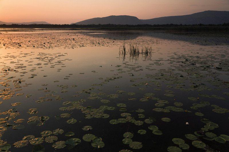 Hutovo Blato wetlands