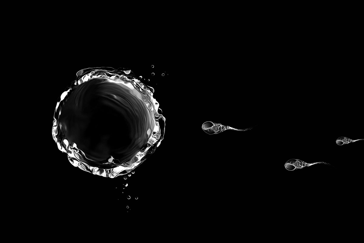 Hijacked sperm carry chemo drugs to cervical cancer cells
