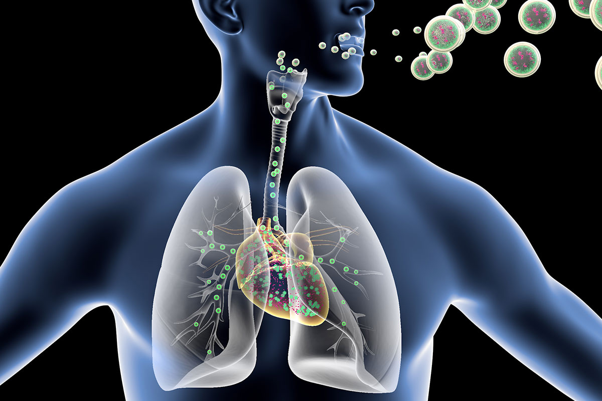 A diagram of a person breathing in