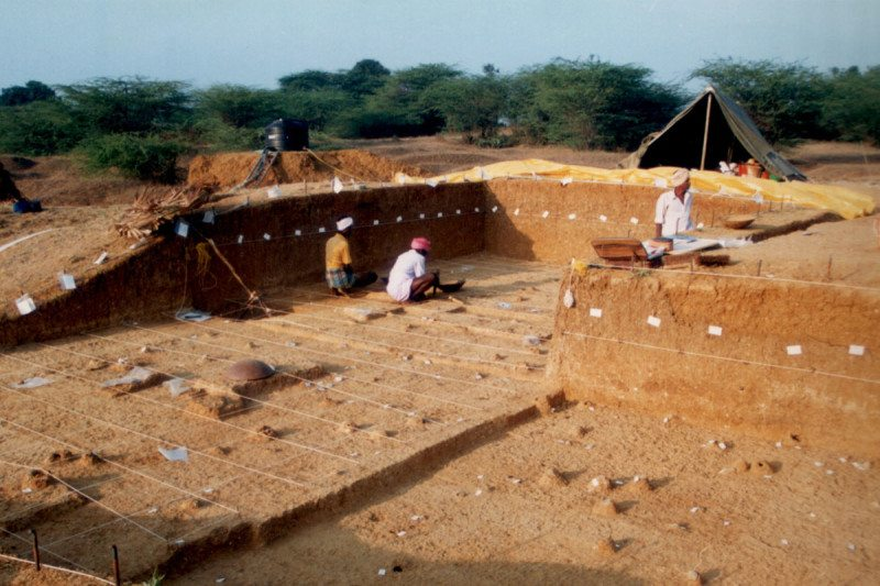 Stone tools found in India push back human migration timeline
