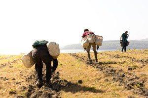 people trekking