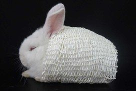 A bunny covered in fabric that mimics a polar bear's fur