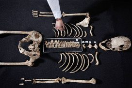 An ancient skeleton