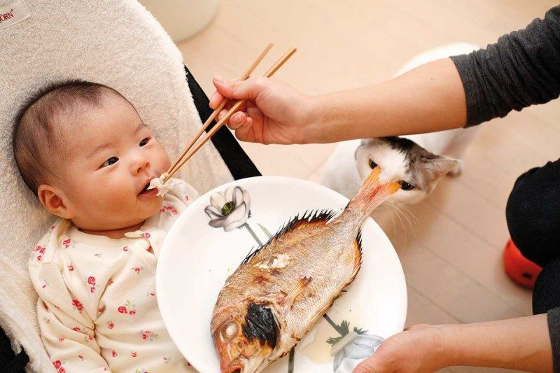 Baby being feed fish