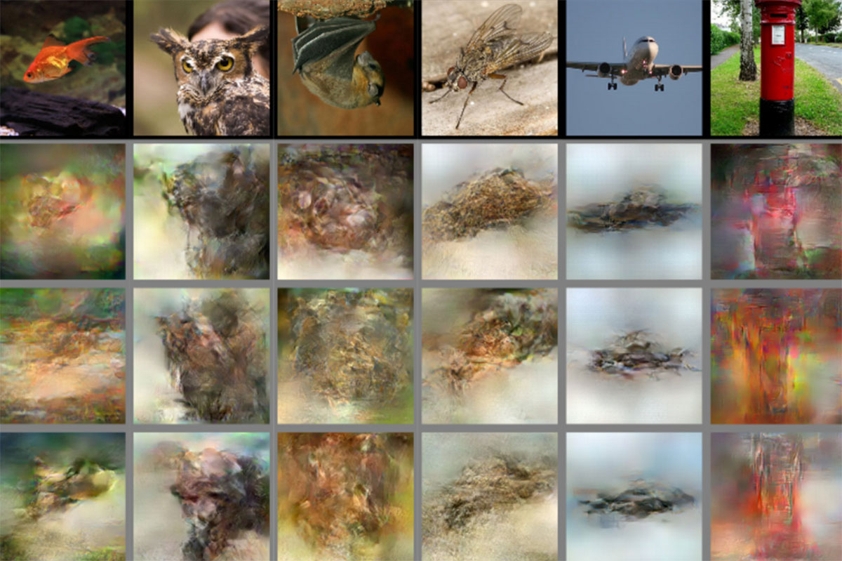 AI reconstructs whatever you see just by reading a brain scan