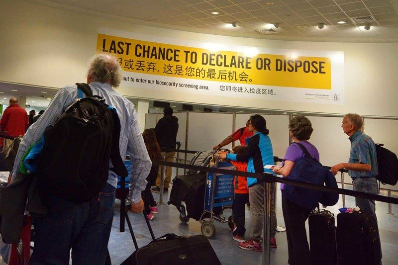 "Airport customs queue with ""Last chance to declare or dispose"" sign above"