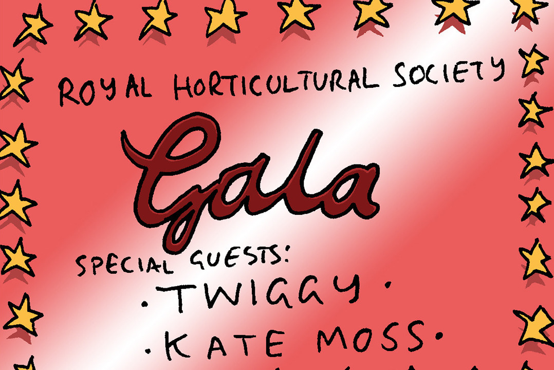 gala cartoon