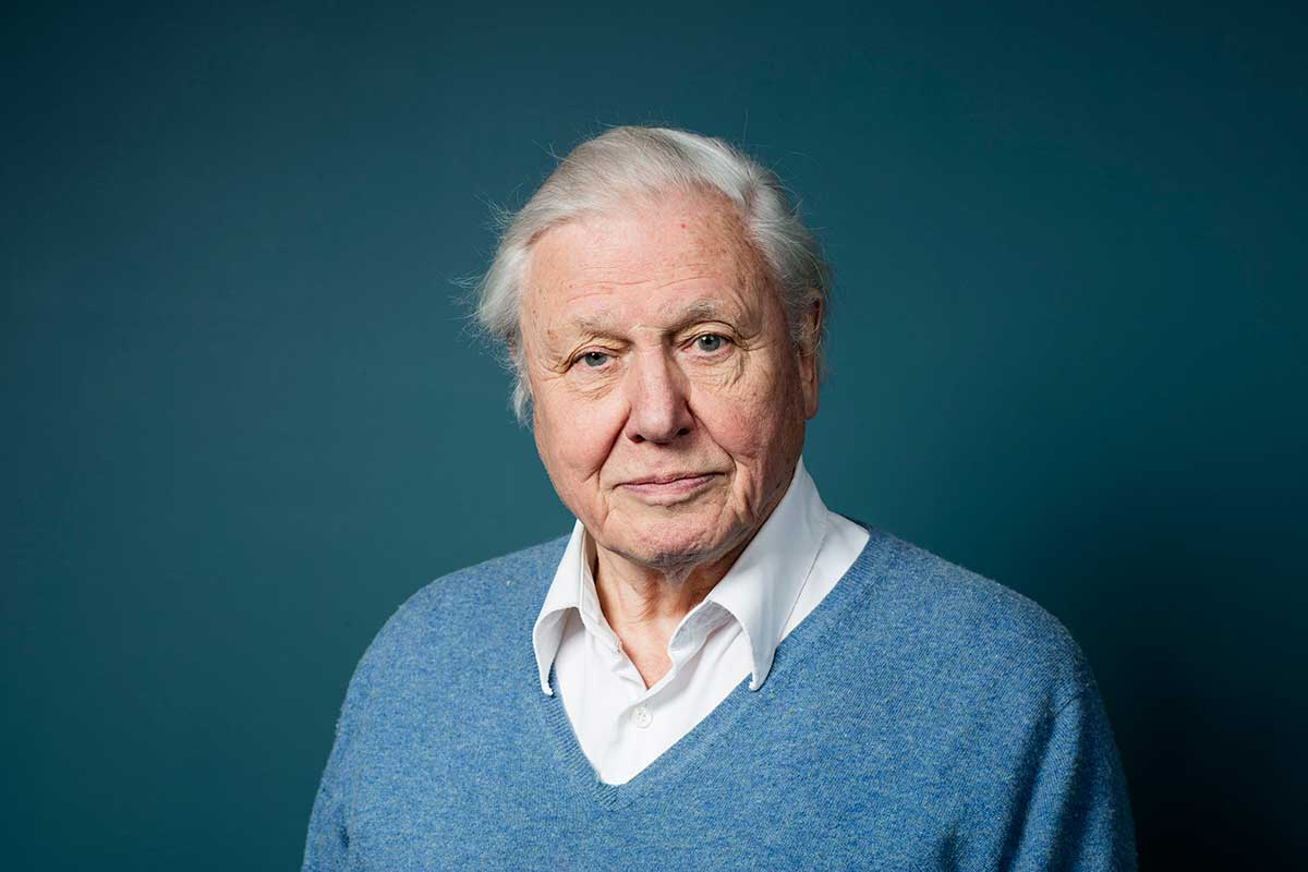 David Attenborough: It's time we humans came to our senses