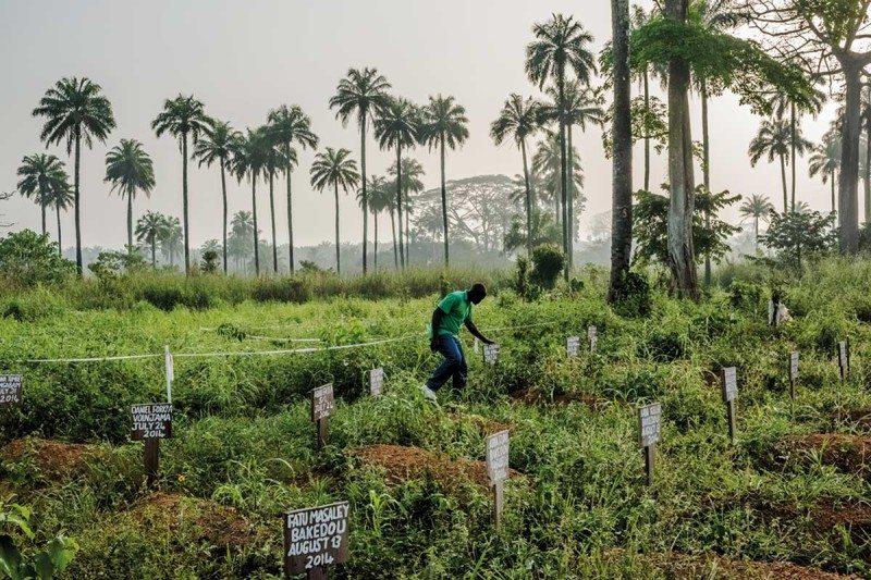 grave markers in Liberia