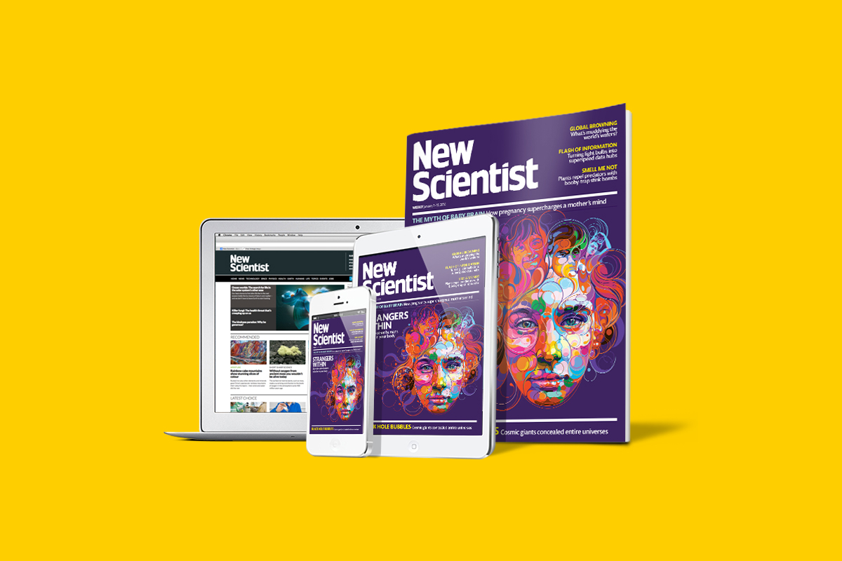 ns-web-print-2016 copy