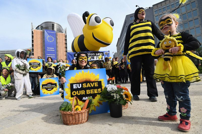 "People in bee costumes hold signs such as ""EU save our bees"""