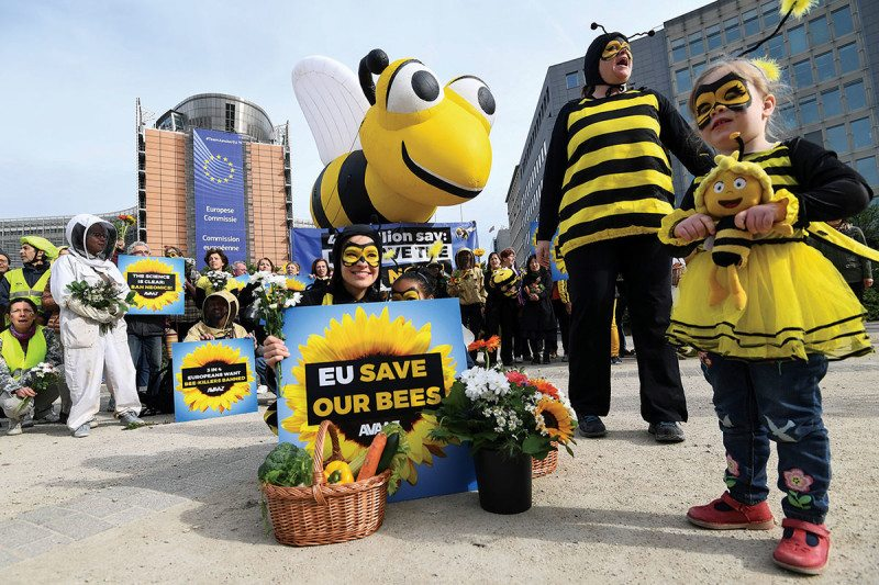 Campaigners for Bees